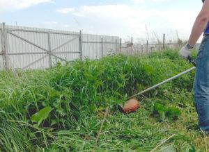 Услуги скоса травы триммером