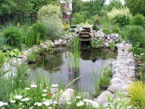 Строительство водоемов и прудов на даче