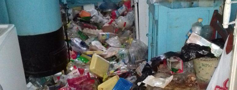 Сбор, погрузка, вывоз и утилизация бытового мусора (ул. Павленко)
